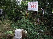 台中新社花海、暗影山:IMGP2598.JPG