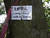 新竹關西赤柯山:IMGP0744.JPG