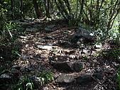 台中和平馬崙山、新山:IMGP2201.JPG