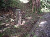 嘉義阿里山塔山步道、大塔山:IMGP0763.JPG