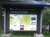 苗栗泰安雪見遊憩區、林間步道:IMG_0004.jpg