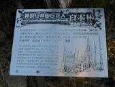 台東海端嘉明湖國家步道DAY-3(嘉明湖避難山屋→向陽國家森林遊樂區):DSCN3718.JPG