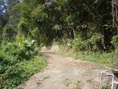 新北林口新林步道:IMGP7513.JPG