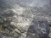 台北七星山、七星山東峰:IMGP1161.JPG