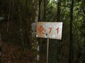 新竹尖石高台山、島田山:DSCN4854.JPG