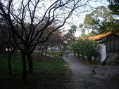 高雄大社觀音山:IMGP8347.JPG