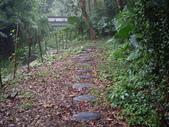 新竹關西石光古道、面埔頂山:IMGP3609.JPG