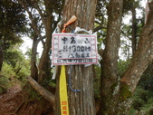 新竹尖石高台山、島田山:DSCN4873.JPG