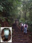 南投魚池水社大山登山步道、卜吉山:IMGP2170.JPG