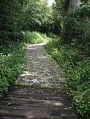 台中后里鳳凰山步道、觀音山步道:IMGP3832.JPG
