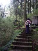 嘉義阿里山塔山步道、大塔山:IMGP0767.JPG