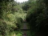 嘉義阿里山塔山步道、大塔山:IMGP0768.JPG