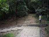 新北汐止夢湖、新山:IMGP6710.JPG