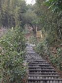 台中東勢天梯取經步道、北大茅埔山:IMGP2716.JPG