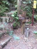 苗栗泰安雪見遊憩區、林間步道:IMG_0012.jpg