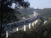新北林口新林步道:IMGP7499.JPG