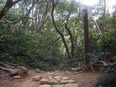 屏東牡丹里龍山步道、里龍山:IMGP5400.JPG