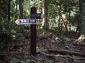 台中和平馬崙山、新山:IMGP2198.JPG