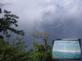 嘉義阿里山塔山步道、大塔山:IMGP0771-72.JPG