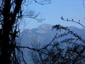 台中和平閂山鈴鳴山(DAY1-閂山):DSCN4178.JPG