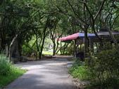 彰化二水松柏嶺登廟步道、南投名間松柏坑山:IMGP6842.JPG