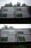 新竹關西石光古道、面埔頂山:IMGP3623-24.JPG