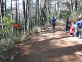 台中和平閂山鈴鳴山(DAY1-閂山):DSCN4194.JPG