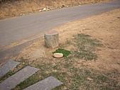 台中龍井竹坑-南寮登山步道:IMGP5840.JPG