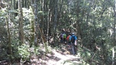 台中和平八仙山主峰步道、佳保台山:IMAG0048.jpg