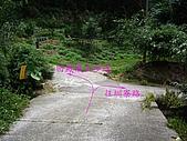 台中后里鳳凰山步道、觀音山步道:IMGP3861.JPG