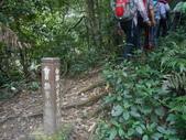 新北三峽白雞山、雞罩山前峰、雞罩山、鹿窟尖山:DSCN5210.JPG