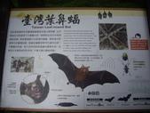 宜蘭員山福山植物園:IMGP5526.JPG