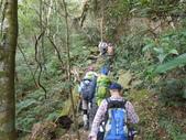 新竹尖石八五山古道、內鳥嘴山、北得拉曼步道:DSCN5026.JPG