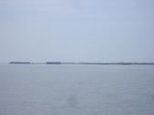 雲林口湖外傘頂洲:IMGP8195.JPG