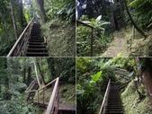 新竹北埔金龜岩登山步道、猴洞登山步道:IMGP9695-98.JPG