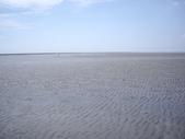雲林口湖外傘頂洲:IMGP8200.JPG