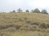 台中和平閂山鈴鳴山(DAY1-閂山):DSCN4265.JPG