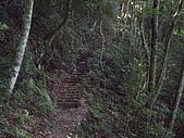 台中和平馬崙山、新山:IMGP2204.JPG