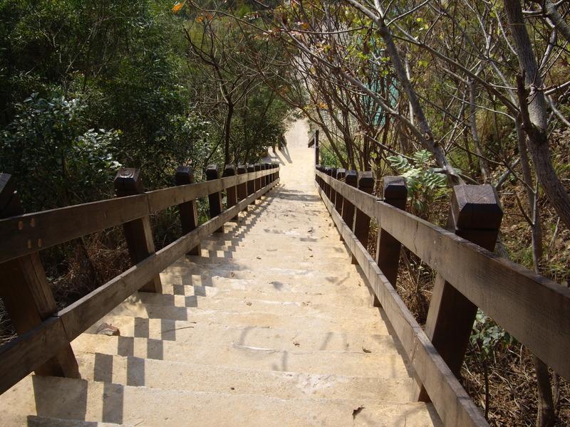台中龍井竹坑-南寮登山步道:IMGP5847.JPG