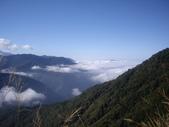 南投信義排雲山莊:IMGP6709.JPG