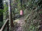 新竹北埔金龜岩登山步道、猴洞登山步道:IMGP9699.JPG