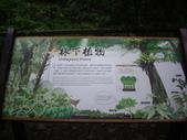 宜蘭員山福山植物園:IMGP5528.JPG