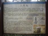 桃園龍潭太平山、石門山:IMGP6989.JPG