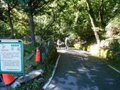 台中和平武陵四秀之二秀(DAY-1 桃山):DSCN4566.JPG