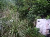 台東蘭嶼環島遊:IMGP5115.JPG
