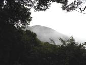 新竹尖石高台山、島田山:DSCN4895.JPG