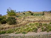 台中龍井竹坑-南寮登山步道:IMGP5851.JPG