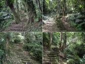 新竹北埔金龜岩登山步道、猴洞登山步道:IMGP9700-04.JPG