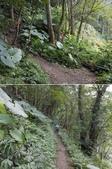 新北三峽雲森瀑布、組合山:DSCN3811-12.JPG