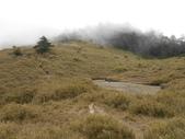 台中和平閂山鈴鳴山(DAY1-閂山):DSCN4245.JPG